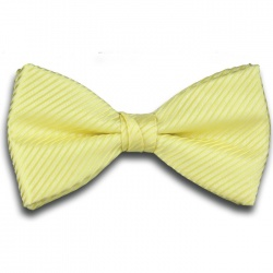 Plain Yellow Ready Tied Bow Tie with Diagonal Stripe